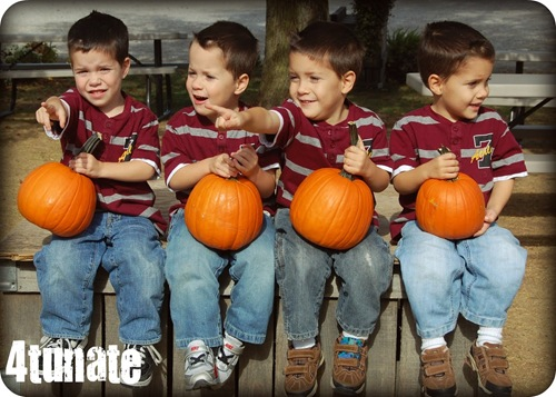 4 little pumpkins
