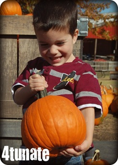 henry pumpkin patch 2010