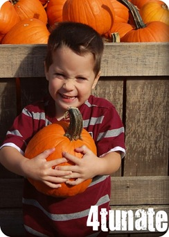 isaac pumpkin patch 2010