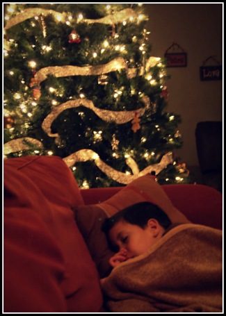 sleeping under the christmas tree
