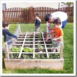 how to plant seeds square foot garden