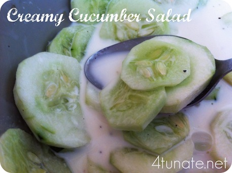 Creamy Cucumber Salad Recipe