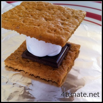 smores on the grill
