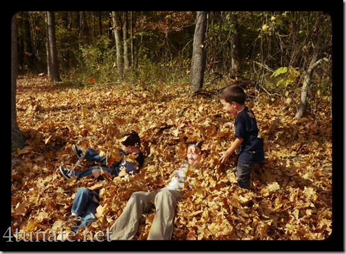 burrying kids in leaves