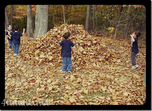 how to build an enormous leaf pile for jumping