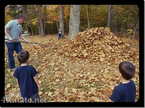 raking a giant leaf pile to jump in