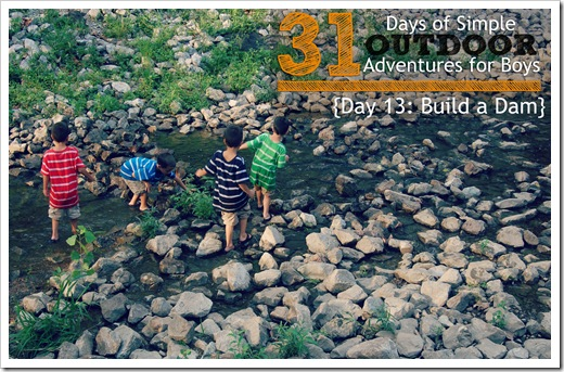 Day 13 Build a Dam Simple Outdoor Adventures for Boys