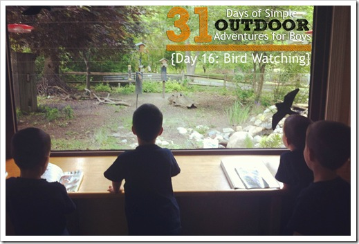 Day 16 Bird Watching Simple Outdoor Adventures for Boys