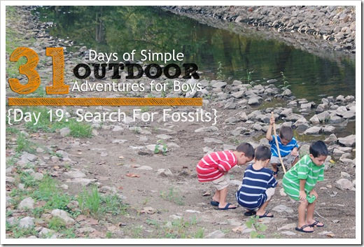 Day 19 Search for Fossils Simple Outdoor Adventures for Boys