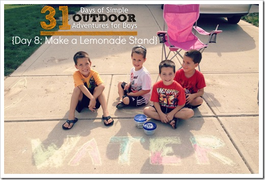 Day 8 Make a Lemonade Stand Simple Outdoor Adventures for Boys
