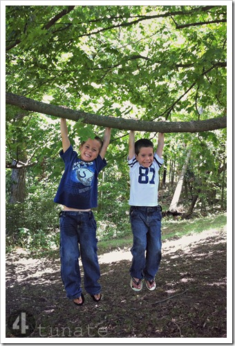 climbing trees as kids outdoor adventures