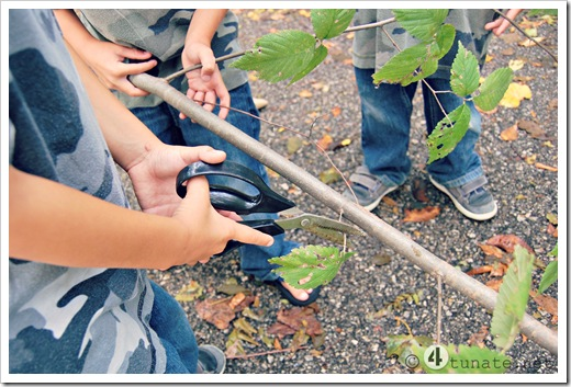 making a bow and arrow from a tree branch homemade