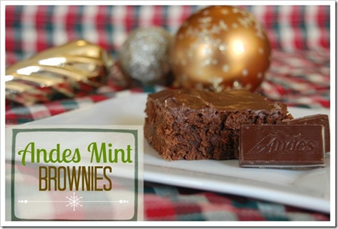 best of 2012 andes mint brownies