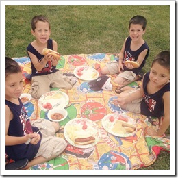 quadruplets 4th of july picnic