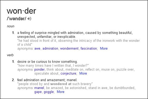 definition of wonder