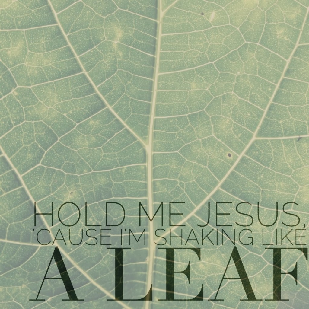 hold-me-jesus-cause-i'm-shaking-like-a-leaf