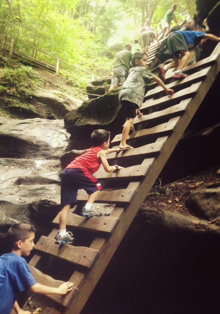 turkey-run-state-park-trail-3-ladders