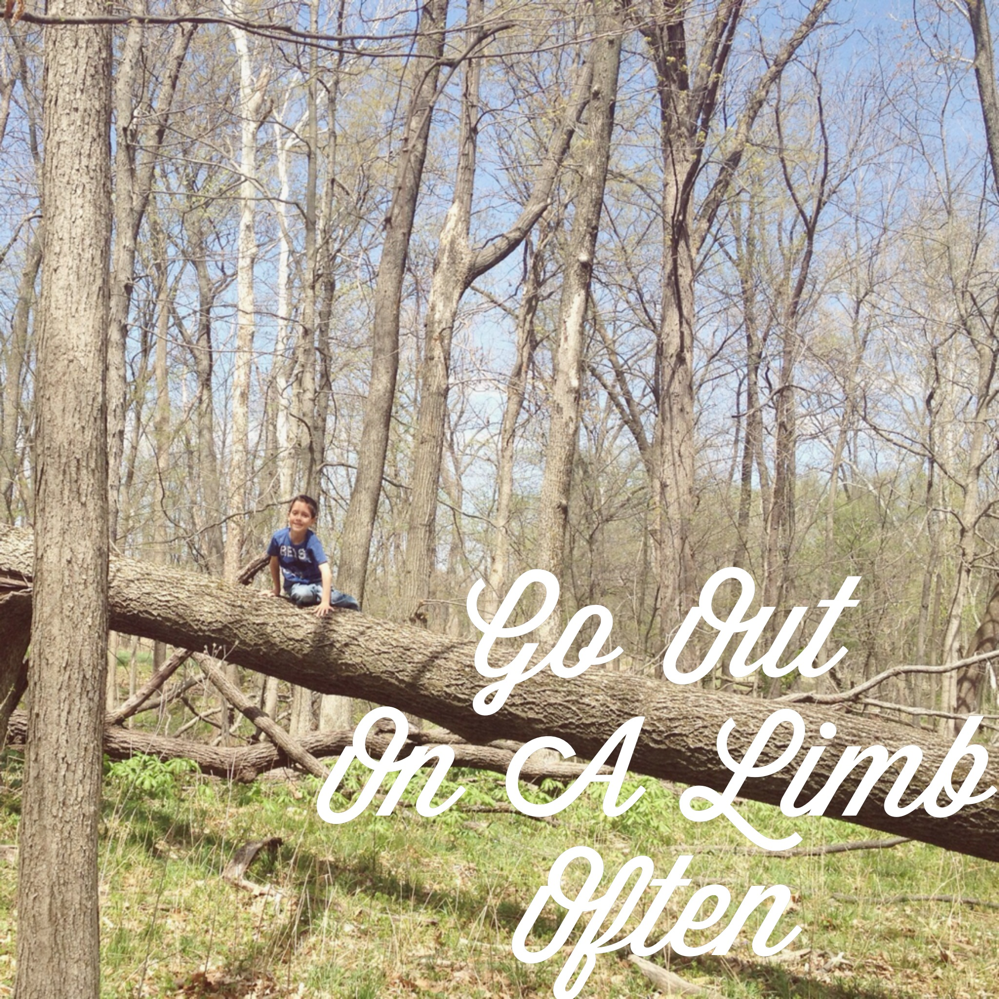 Go Out On A Limb Often